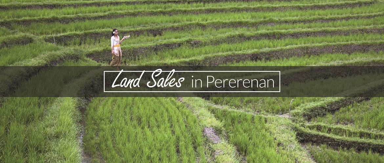 Pererenan Commercial Land for Sale